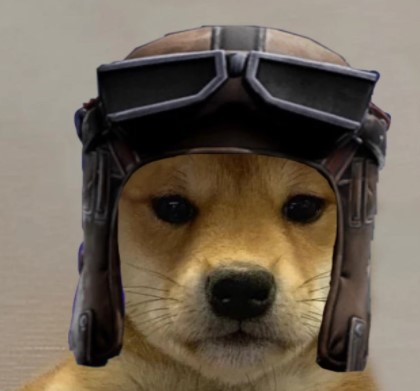 Dog with Renegade Raider Hat Fortnite | Fortnite News